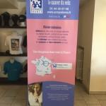 Europa Donna - Auxerre (2)